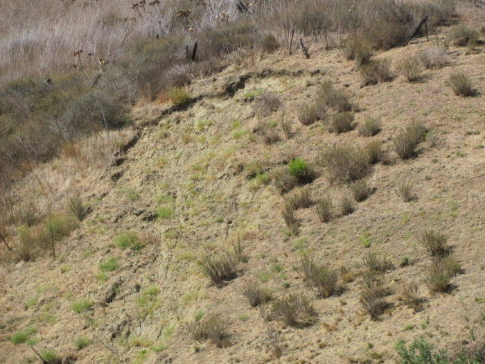 Soil movement from slope creep with cracks