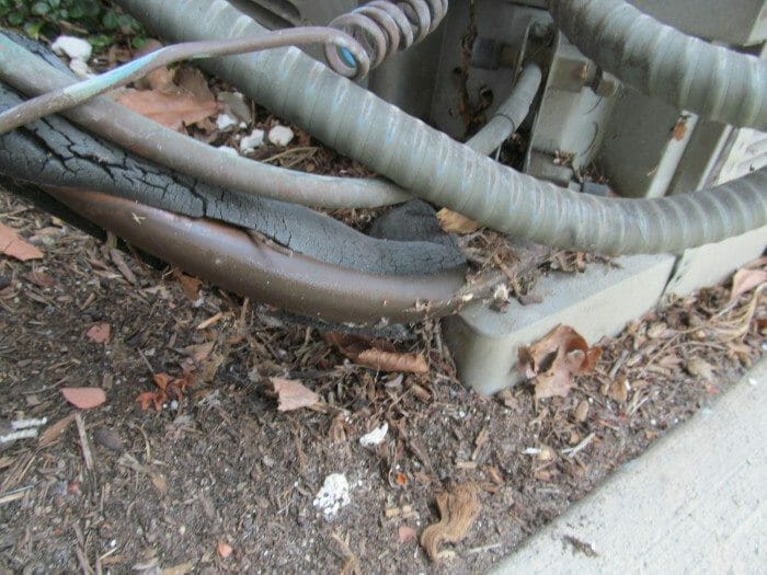 Insulation Missing Or Damaged On Refrigerant Line Buyers Ask