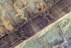 Floor damage termites