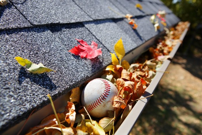 Gutter filled with leaves and baseball