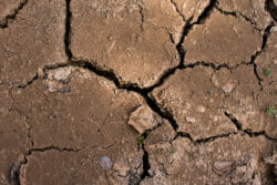 Cracked clay expansive soil