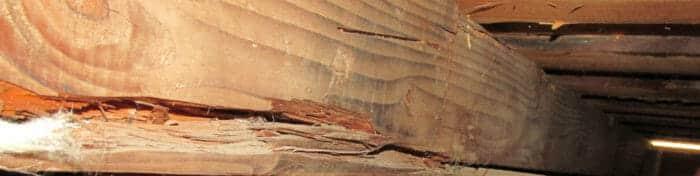 Cracked or damaged wood framing member