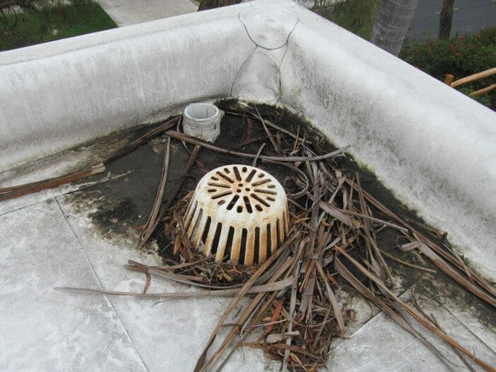 Clogged Drains And Debris Build Up On Flat Roofs Buyers Ask