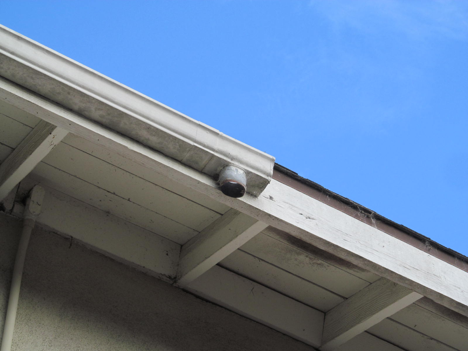 Leaking gutters repair and check for siding damage for Leaking roof gutter