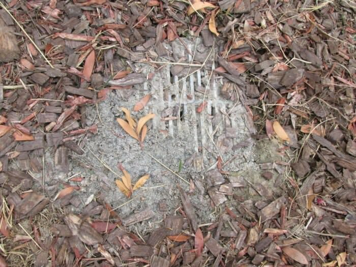 Clogged Yard Drains Buyers Ask