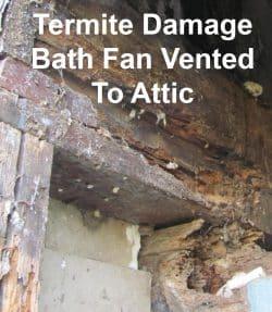 Termite damage caused from bath fan moisture