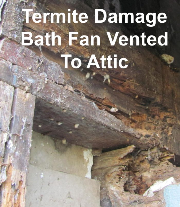 Termite damage caused from bath fan moisture