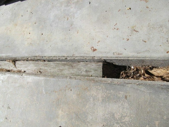 Wood control joint in concrete walk, drive or patio